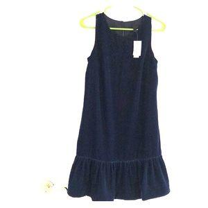 JCrew velvet dress